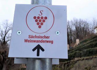 Aktueller Stand Qualifizierung Sächsischer Weinwanderweg