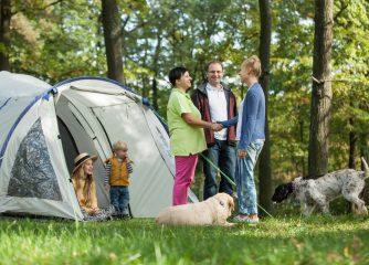 Handlungsempfehlungen für Campingunternehmer zum Betrieb von Camping- und Wohnmobilstellplätzen in Deutschland während der Corona-Pandemie