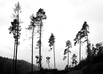 Wege im Nationalpark unpassierbar