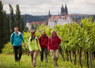 Start Crowdfunding-Kampagne für den AudioGuide zum Sächsischen Weinwanderweg