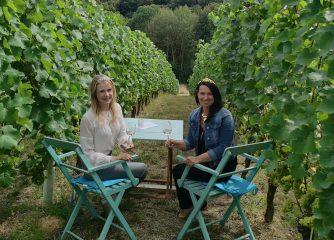 Tage des offenen Weingutes & Sommer der offenen Weingüter